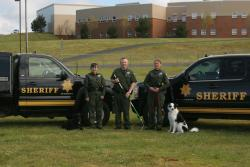 Three animal services deputies